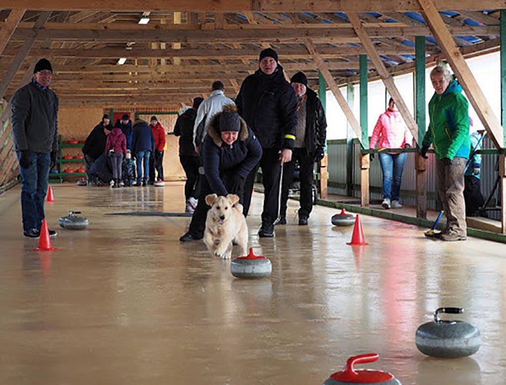 joulu-curling